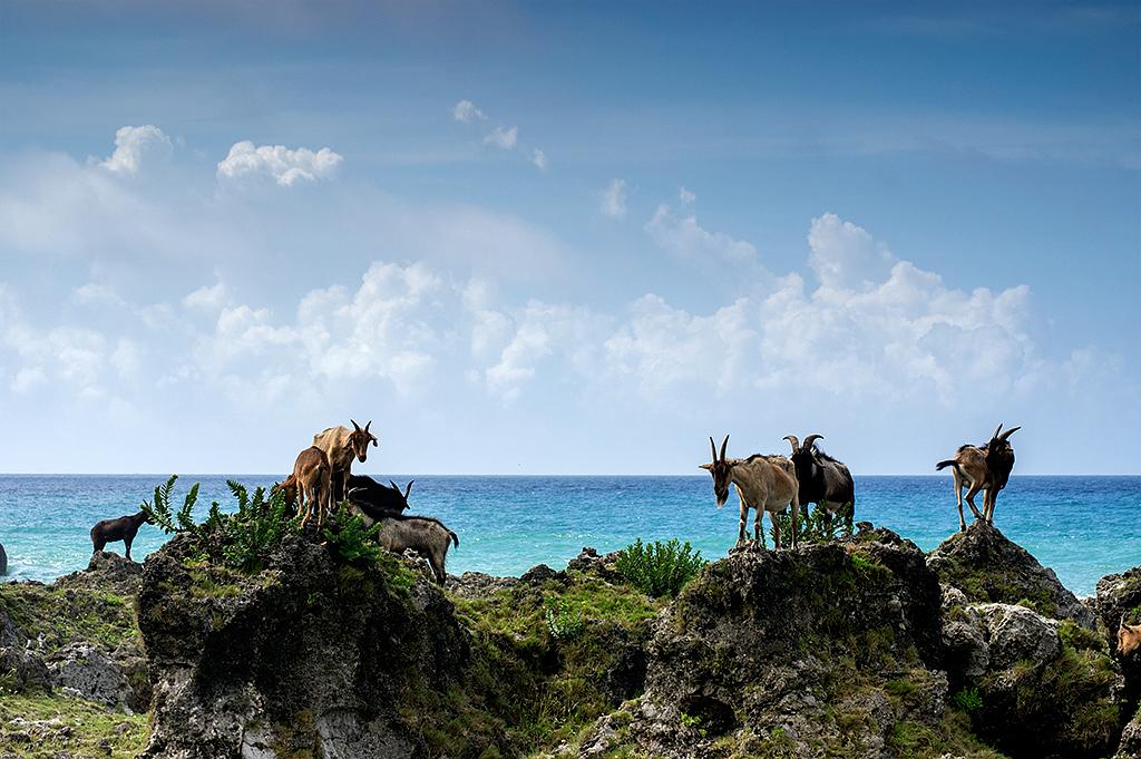 當 Pentax K3 遇見蘭嶼