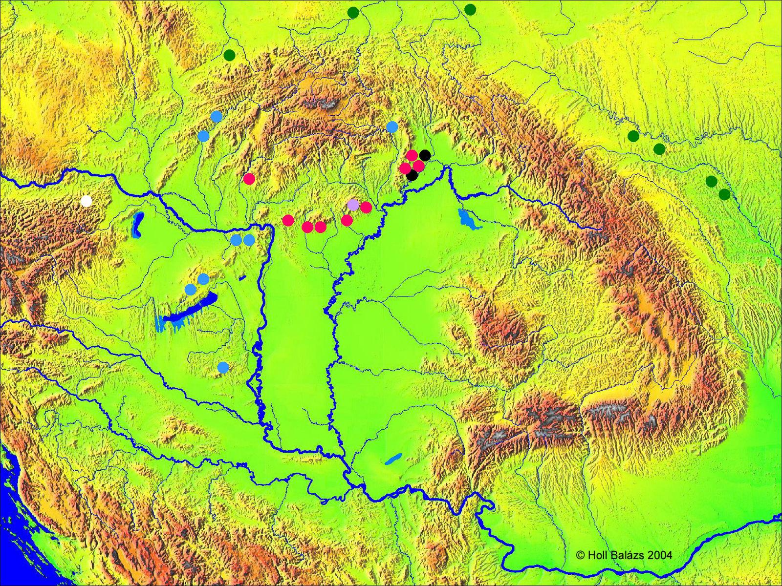 Gravetti topográfia 19. ábra