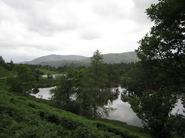 Lake District June 2014 059