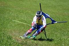 Čeští travaři sbírali na SP stupně vítězů