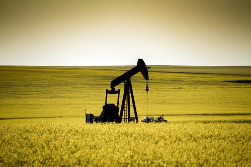 summer canada field jack grande peace country pump alberta oil rod prairie sucker canola