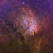 NGC 6823 with surrounding nebulosity by Jesper Sundh