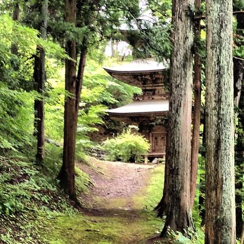 In Saku, Nagano, Japan