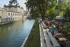 Slovénie - Terrasses de Ljubljana