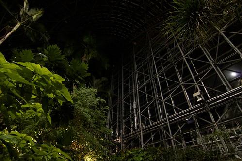 夢の島熱帯植物館 夜間開館2014