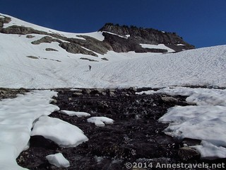 A stream flows out of the snow on Ptarmigan Ridge, Mount Baker-Snoqualmie National Forest, Washington