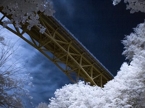 bridge infraredir olympusmzuikodigital17mmf28 olympusm17mmf28 olympuspenepl1micro43micro43 filterhoyar72infrared vacation2014summer