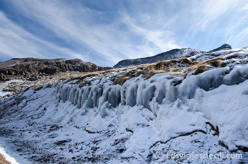 Pampa nevada