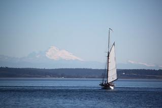 IMG_3367 - Port Townsend WA - 2014 Wooden Boat Festival - Schooner ADVENTURESS and Mount Baker