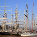 thumbnail photo in photoset Greenwich Tall Ships Festivals
