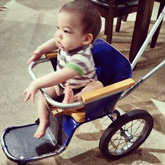 """""""... and then he did THIS!"""" #babytellingstories #riding"""