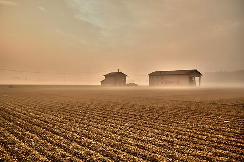 nikon alba campagna bologna nebbia carmine calcara crespellano carmined attino d3100 carminedesimone