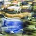WEMBLEY STADIUM 24 by Nigel Bewley