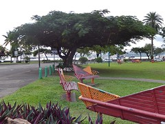 Bench Park
