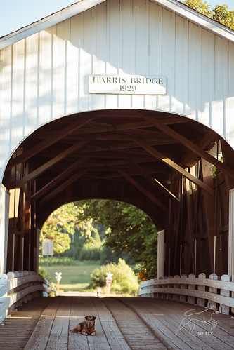 Harris Covered Bridge-2163