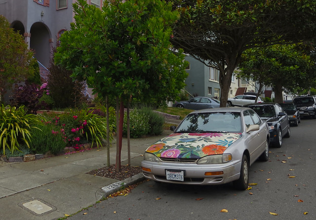 Car with flower-painted hood; The Sunset, San Francisco (2014)