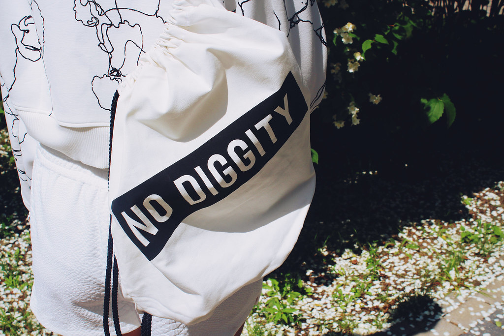 no-diggity-bag