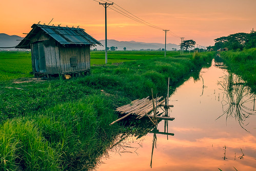 travel sunset red orange reflection green water field river photography asia fuji rice burma ngc fields myanmar x100s