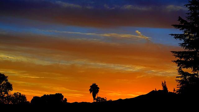 Sunset sighting