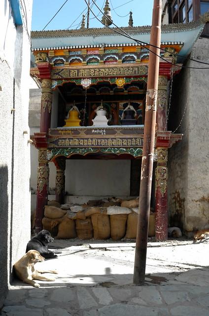 Leh, Ladakh, 11 Aug 2014. L128