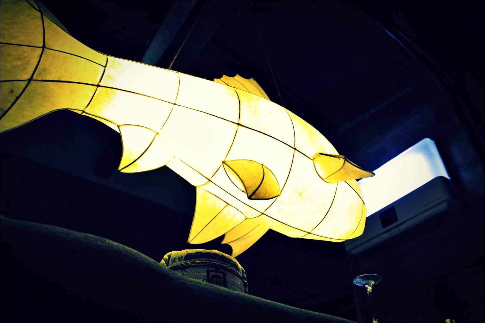 물고기-'신포동 이자카야 물고기 Izakaya Mulgogi '