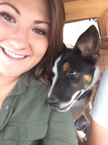 Z Crew: My Pup