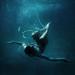 i fall too fast by Katharina Jung