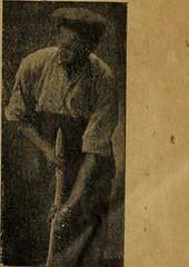 """Image from page 1260 of """"Revue de viticulture : organe de l'agriculture des régions viticoles"""" (1893)"""