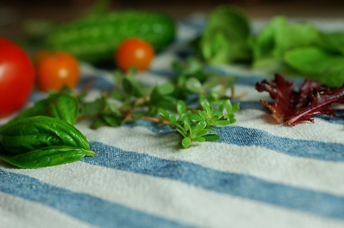 Lettuce, basil, purslane, tomatoes and cucumbers from the garden by Eve Fox, The Garden of Eating, copyright 2014