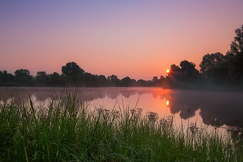 sun lake misty fog sunrise see sonnenaufgang kassel buga