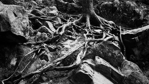bw mountains hiking maine borestone piscataquiscounty