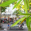 Visions of La Rentrée.  A little plaza full of happy kids! #Paris #France  #larentree