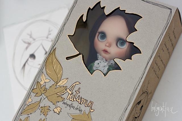 Autumn custom box