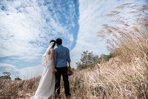 坪輋的藍天白雲與原野
