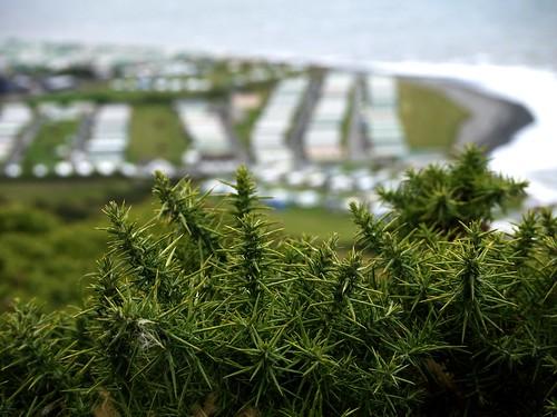 wales cymru campsite pengarreg lumixg2 panasoniclumixg2
