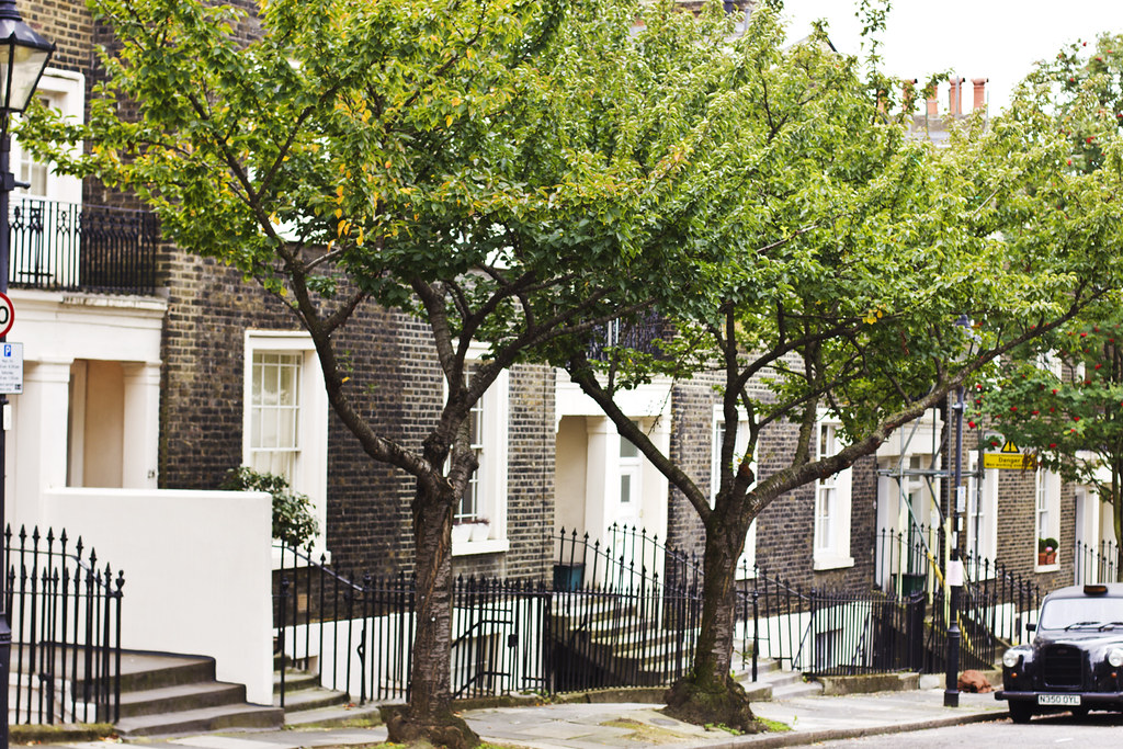 Kings Cross Angel Exmouth Market London Streets Trees Road Wrought iron railings