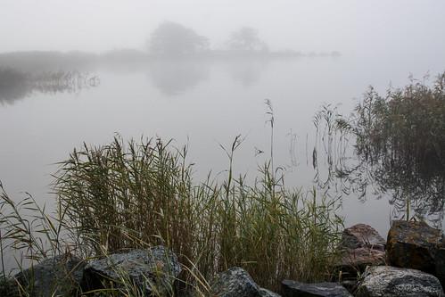 sea fog landscape meri maisema sumu