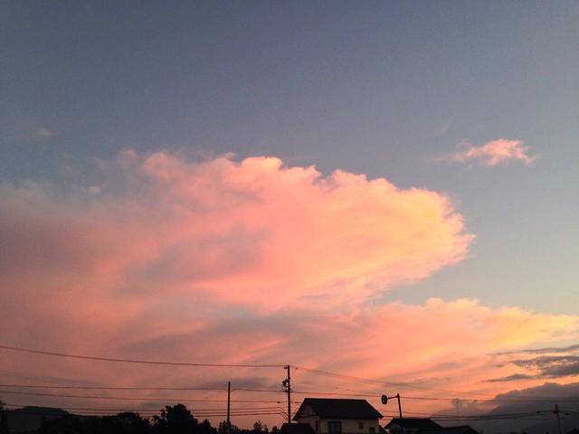 2014.9.8 ゆうやけ