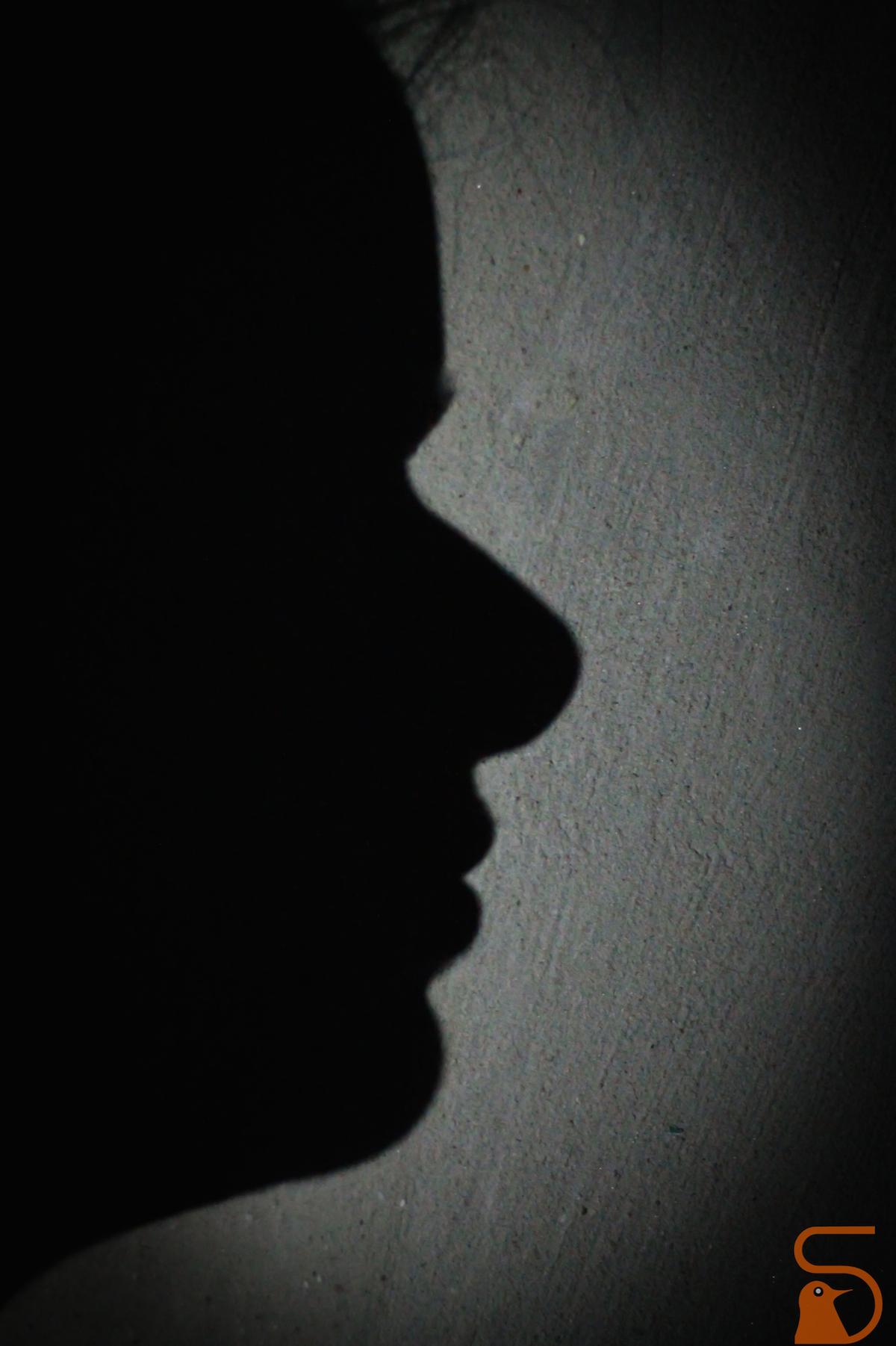 shadow Sahadev