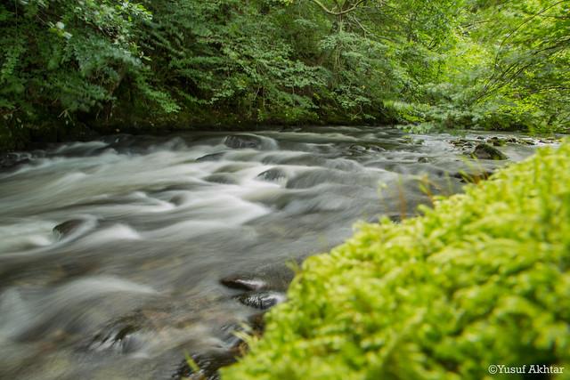 River Long Exposure