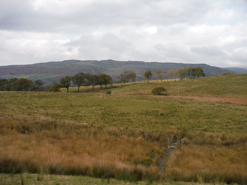 Cribarth Plateau from highest point on the walk
