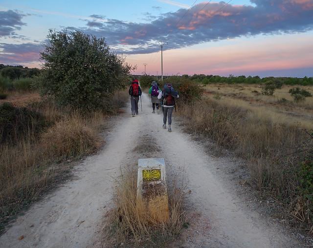 Camino-238