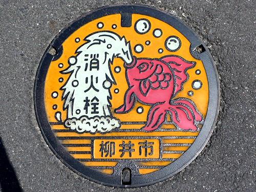 Yanai Yamaguchi, manhole cover 3 (山口県柳井市のマンホール3)