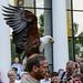 OK's Pics hat ein Foto gepostet:Steinadler bei der GreifvogelflugschauBesier/Oehling Minikina 2014