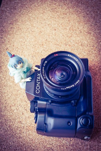 カメラロール-7391