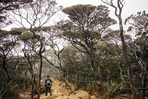 Travel Photography   Mount Kinabalu   Sabah Borneo