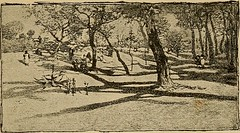 """Image from page 76 of """"A white umbrella in Mexico"""" (1889)"""
