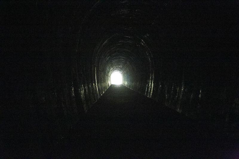 武庫川渓谷廃線ハイキング(生瀬ー武田尾)536