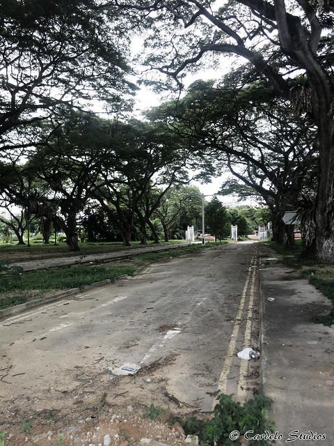 Stadium Link 04