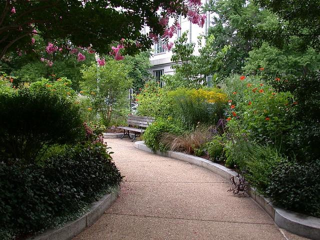 Butterfly Habitat Garden